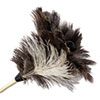 Boardwalk® Professional Ostrich Feather Duster